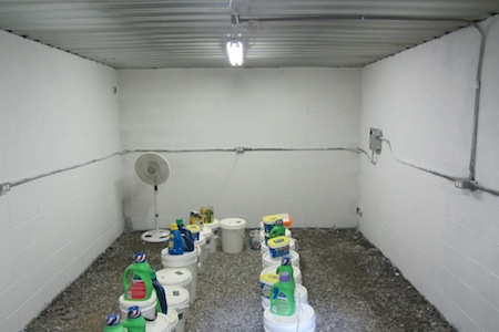 inside our root cellar