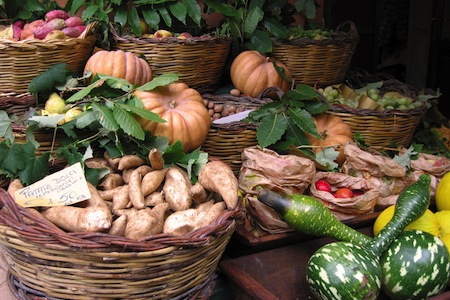 storing root crops